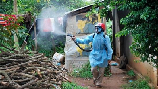 Lợi ích phun thuốc diệt muỗi mang lại
